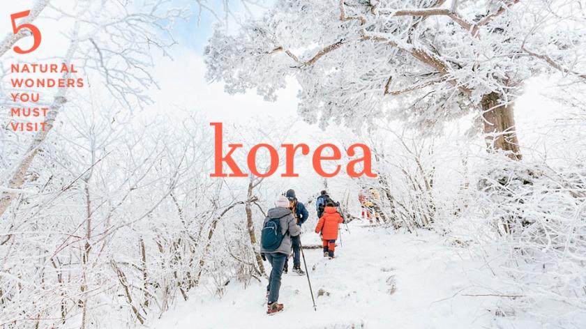 asl korea tvlk 03.jpg