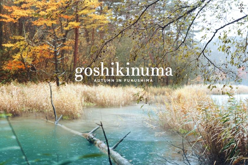 asl fuku goshikinuma 01